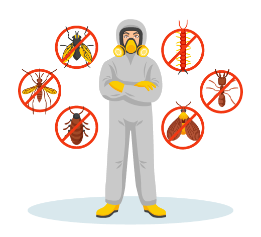 Pest Control Experts Ringwood